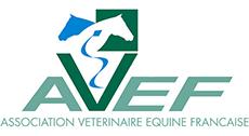 Logo AVEF
